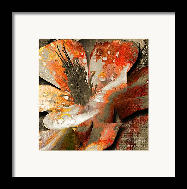 Framed Print featuring the mixed media Seeds by Yanni Theodorou