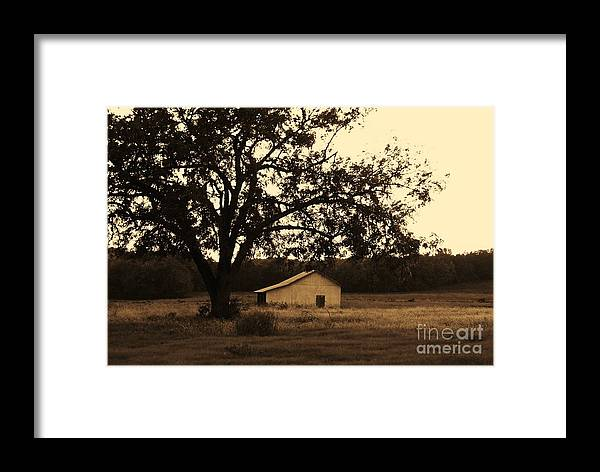 Julie Clements Framed Print featuring the photograph Sepia Simplicity by Julie Clements