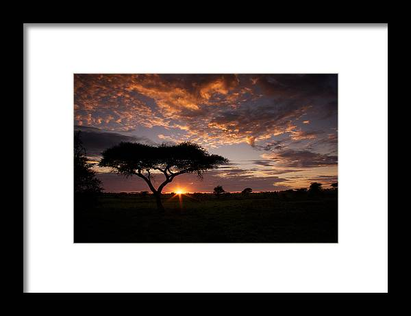 Sunrise Framed Print featuring the photograph Serengeti Sunrise by Michael Underhill