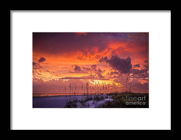 Beach Framed Print featuring the photograph Serenity by Marvin Spates