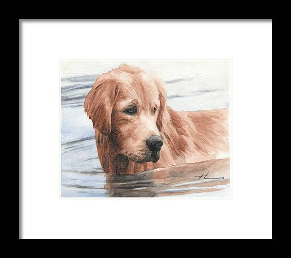 Www.miketheuer.com Setter Dog In Water Watercolor Portrait Framed Print featuring the drawing Setter Dog In Water Watercolor Portrait by Mike Theuer
