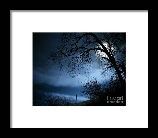 Nature Framed Print featuring the photograph Shadowlands 3 by Peter Awax