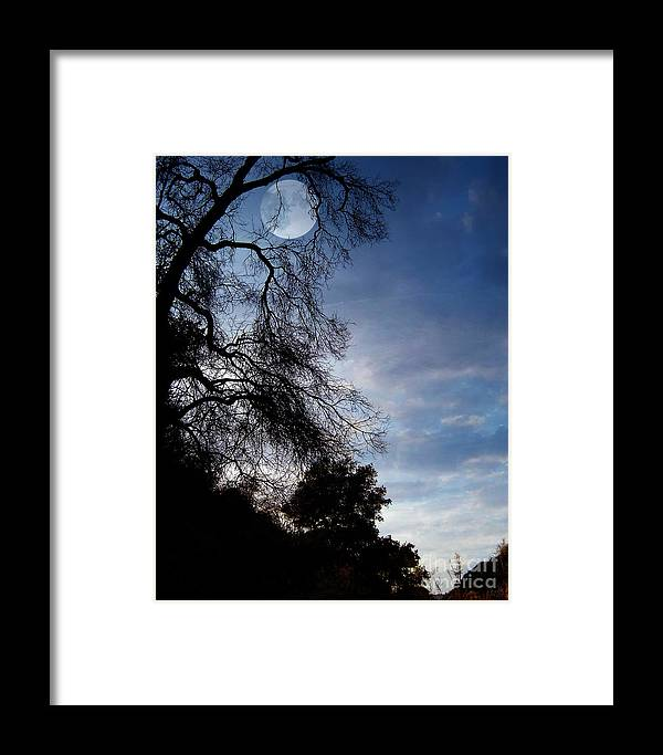 Nature Framed Print featuring the photograph Shadowlands 4 by Peter Awax