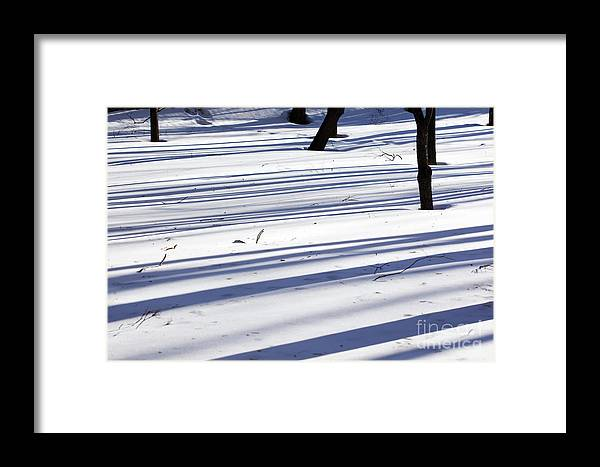 Winter Framed Print featuring the photograph Shadows Lines On Snow In Park by Konstantin Sutyagin