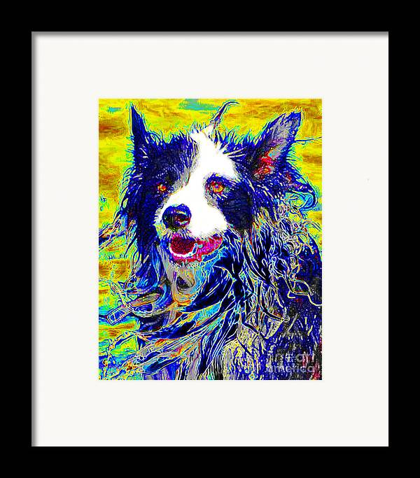 Animal Framed Print featuring the photograph Sheep Dog 20130125v1 by Wingsdomain Art and Photography