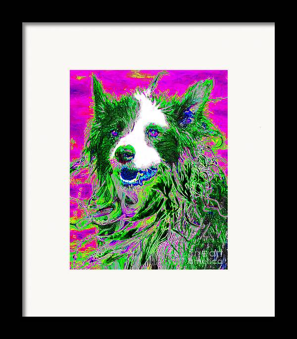 Animal Framed Print featuring the photograph Sheep Dog 20130125v2 by Wingsdomain Art and Photography