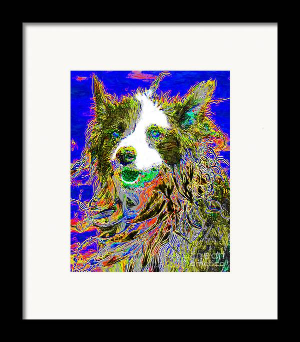 Animal Framed Print featuring the photograph Sheep Dog 20130125v3 by Wingsdomain Art and Photography