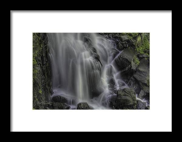 Framed Print featuring the photograph Sheer Delight by Bill Sherrell