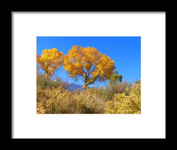 Sky Framed Print featuring the photograph Sierra Gold by Marilyn Diaz