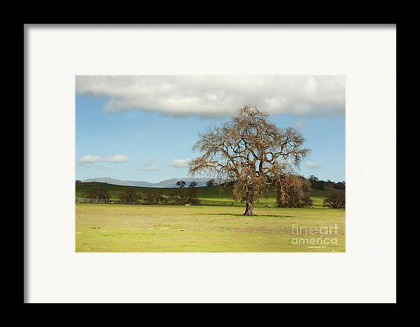 Landscape Photography Framed Print featuring the photograph Silicon Valley Hills by Artist and Photographer Laura Wrede
