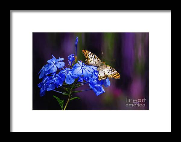 Butterfly Framed Print featuring the digital art Silver And Gold by Lois Bryan