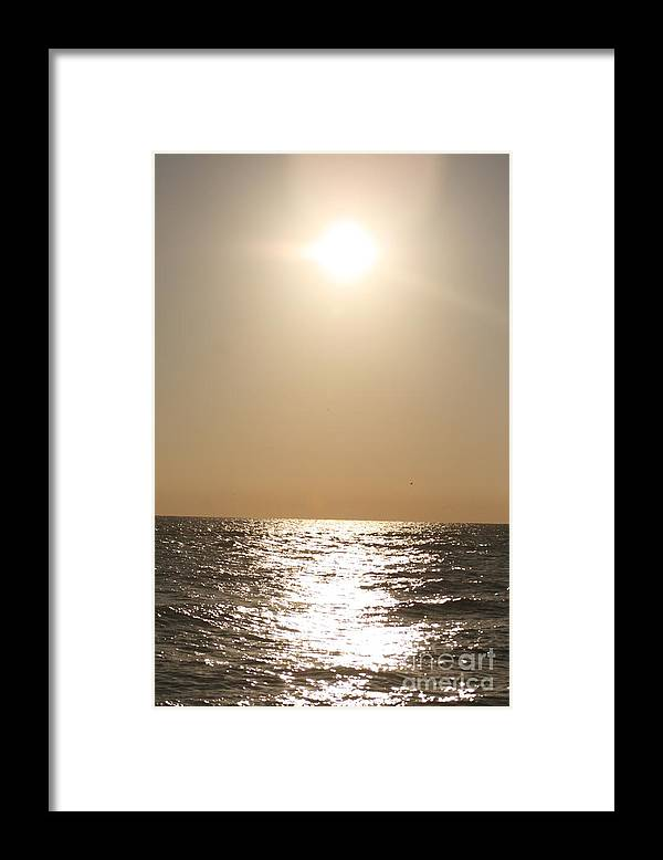 Silver Framed Print featuring the photograph Silver and Gold by Nadine Rippelmeyer