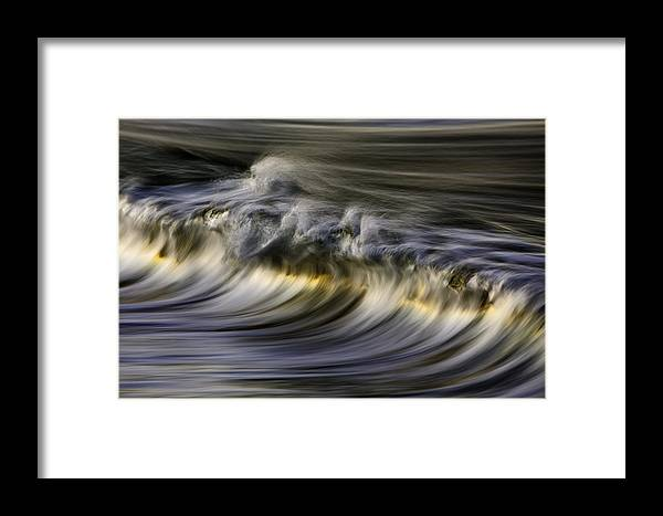 Orias Framed Print featuring the photograph Silver Sheen 73a3145 by David Orias