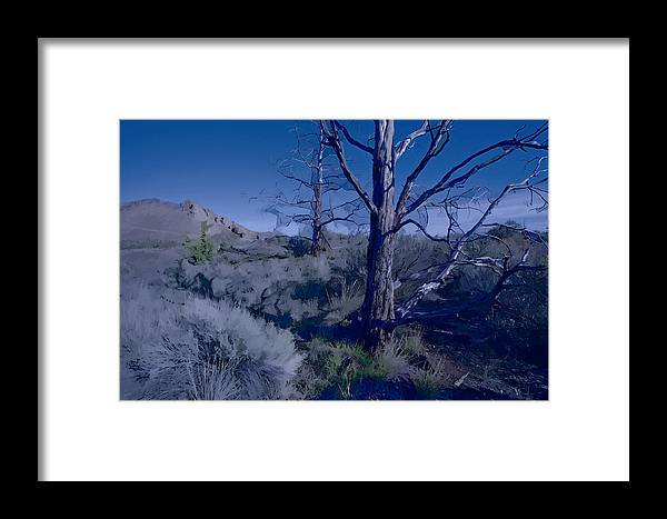 Painterly Framed Print featuring the photograph Singin The Blues by Bonnie Bruno