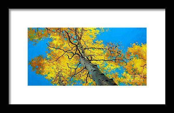 Aspen Canopy Framed Print featuring the painting Sky High 3 by Gary Kim