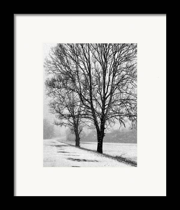 Indiana Framed Print featuring the photograph Slow Going I by Julie Dant