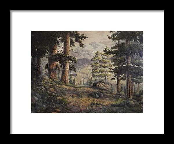 Slumgullian Mountain Colo. Framed Print featuring the painting Slumgullian Pass by Wanda Dansereau
