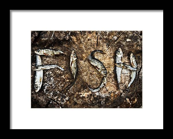 Animal Framed Print featuring the photograph Small Dried Fishes Forming The Word Fish by Jean Schweitzer