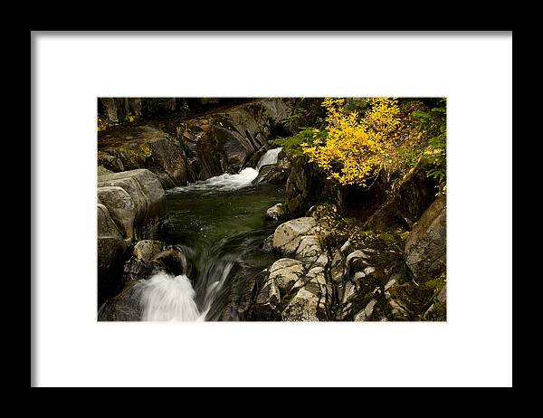 Fall Framed Print featuring the photograph Small Stream During Fall by Shaun McWhinney
