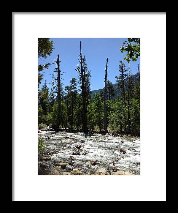 Snags In The Stream Framed Print featuring the photograph Snags In The Stream by JP McKim