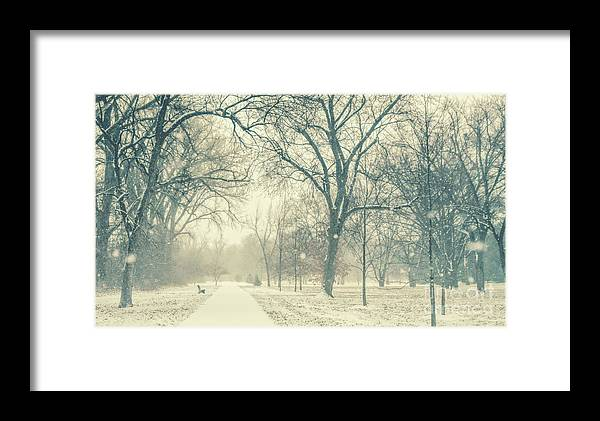 Snow Framed Print featuring the photograph Snow Day by Pam Holdsworth