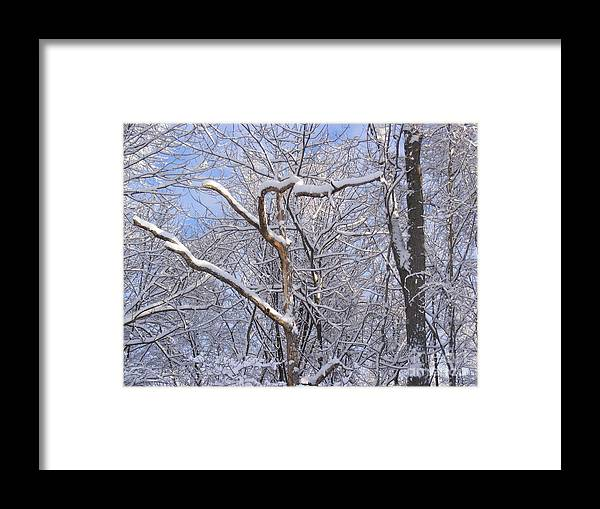 Connecticut Winters Framed Print featuring the photograph Snow In Connecticut by Lisa Cortez