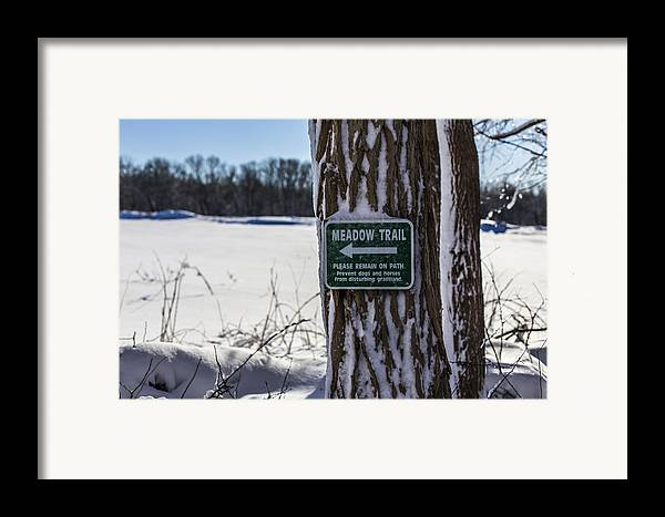 Andrew Pacheco Framed Print featuring the photograph Snow In The Meadow by Andrew Pacheco