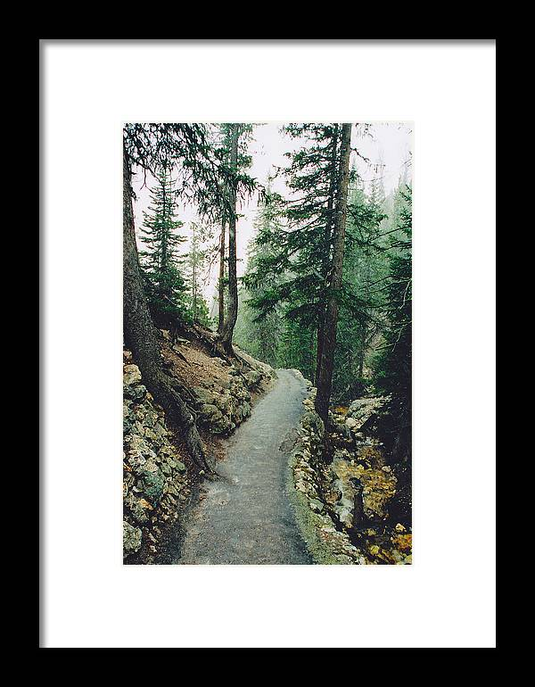 Yellowstone National Park Framed Print featuring the photograph Snow On The North Rim Trail by Jon Emery