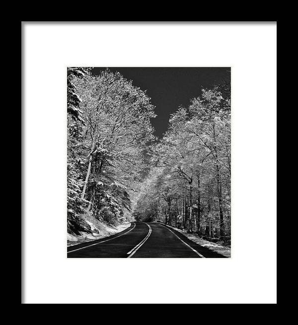 Hudson Valley Landscapes Framed Print featuring the photograph Snow Trees by Thomas McGuire