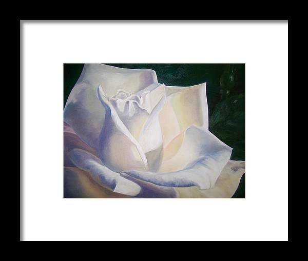 Close Up Floral White Rose Framed Print featuring the painting Snow White by Ellen Ebert