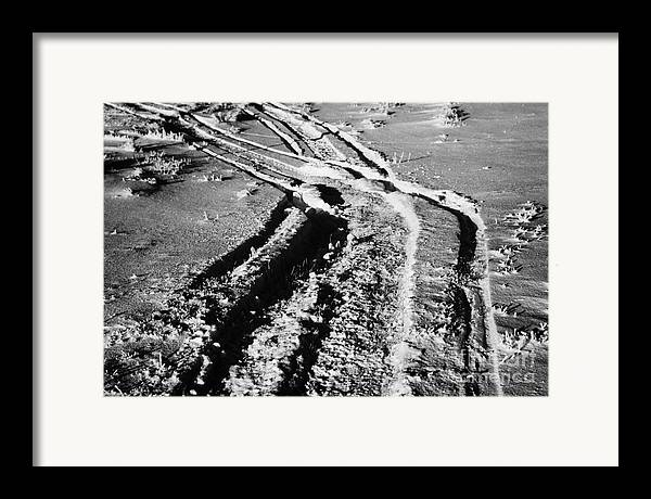 Snowmobile Framed Print featuring the photograph snowmobile tracks in snow across frozen field Canada by Joe Fox