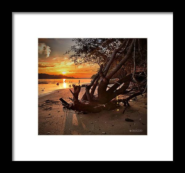 Sunset Print Framed Print featuring the photograph Snow's Cut Driftwood Sunset by Phil Mancuso