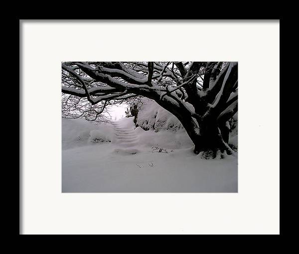 Snow Framed Print featuring the photograph Snowy Path by Amanda Moore