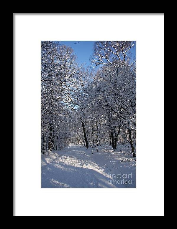 Forest Framed Print featuring the photograph Snowy Trail by Christiane Schulze Art And Photography