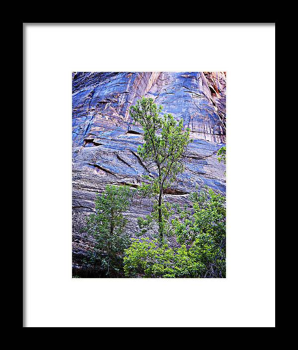 Canyon Framed Print featuring the photograph So Zion 2 by Marilyn Hunt