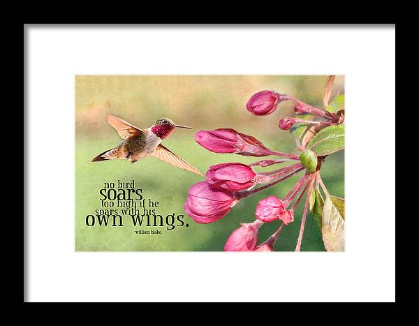 Hummingbird Framed Print featuring the photograph Soaring by Kathy Jennings