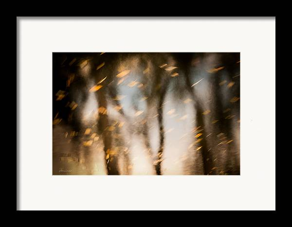 Abstract Framed Print featuring the photograph Soft Autumn by Steven Milner