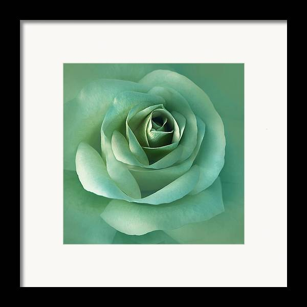 Rose Framed Print featuring the photograph Soft Emerald Green Rose Flower by Jennie Marie Schell