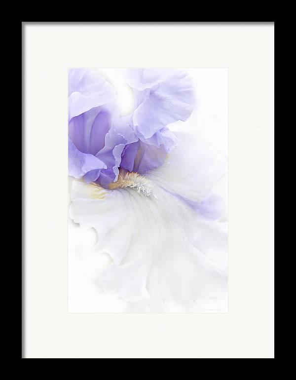 Iris Framed Print featuring the photograph Softness Of A Lavender Iris Flower by Jennie Marie Schell