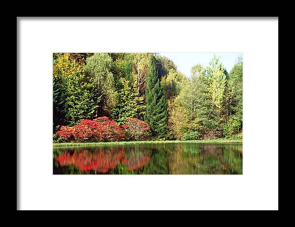 Reflection Framed Print featuring the photograph Softness by Patrick Kessler
