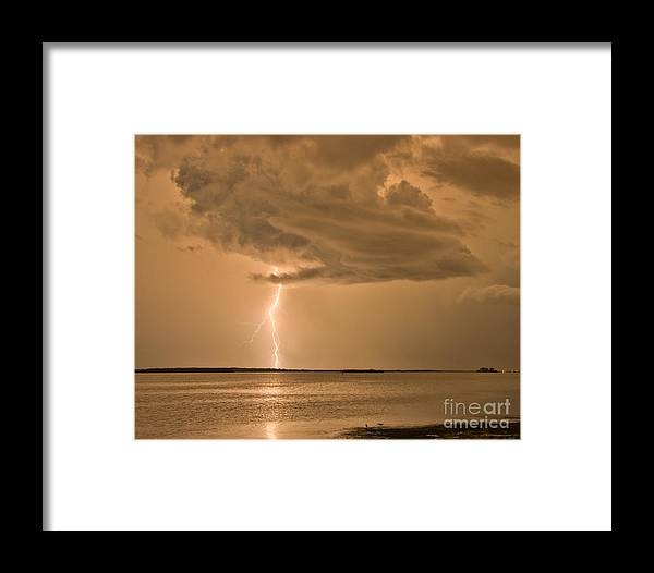 Florida Framed Print featuring the photograph Solitude by Stephen Whalen