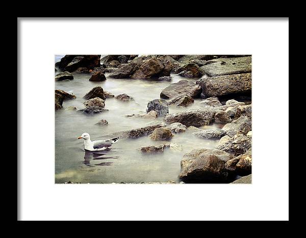 Seaside Framed Print featuring the photograph Somewhere Inside The Memory by Zapista