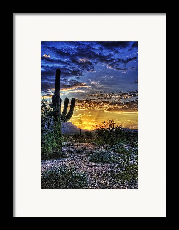 Sonoran Desert Framed Print featuring the photograph Sonoran Sunrise by Saija Lehtonen