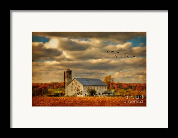 White Barn Framed Print featuring the photograph South For The Winter by Lois Bryan