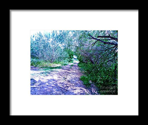 South Framed Print featuring the photograph South Texas Brushlands by Chuck Taylor