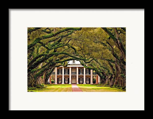 Oak Alley Plantation Framed Print featuring the photograph Southern Class Painted by Steve Harrington