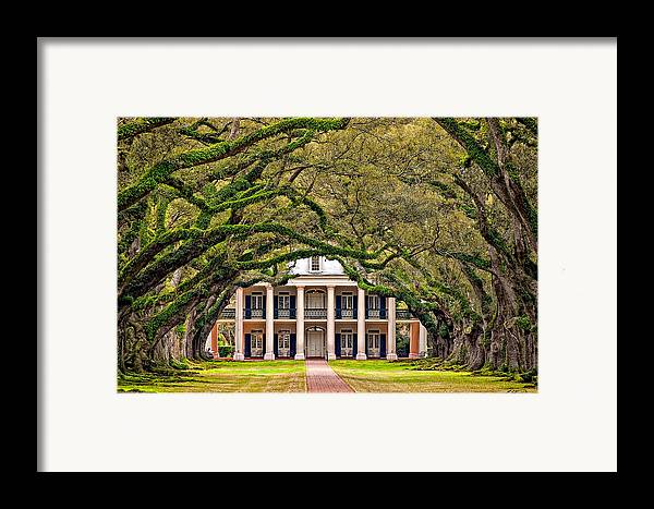 Oak Alley Plantation Framed Print featuring the photograph Southern Class by Steve Harrington