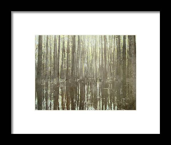 Brett Framed Print featuring the digital art Southern Swamp by Brett Pfister