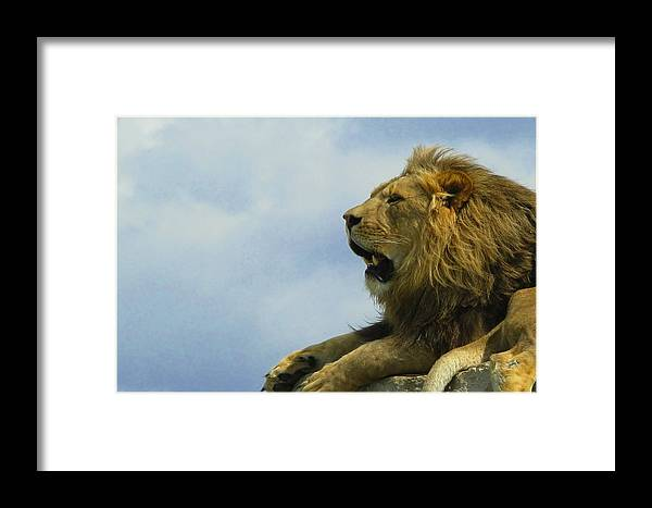 Framed Print featuring the photograph Speaking by Matthew Barton