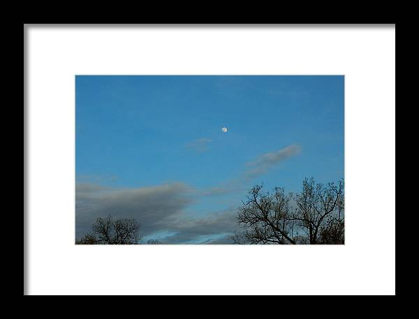 Spring Framed Print featuring the photograph Early Moon by Wild Thing